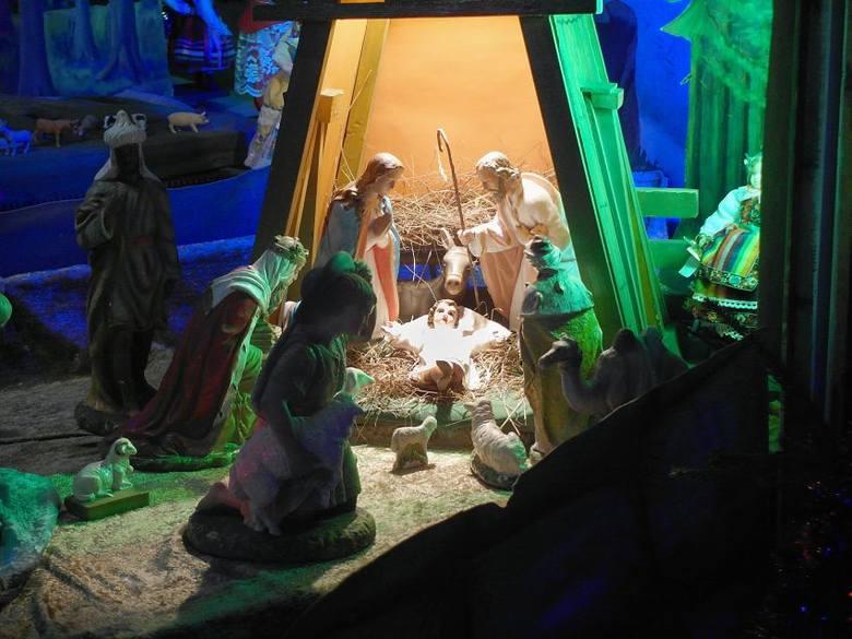 Bożonarodzeniowe szopki w łódzkich kościołach. Zobacz zdjęcia