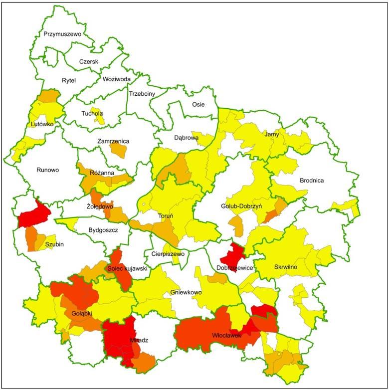 Kornik ostrozębny i kornik drukarz niszczą lasy w Polsce! Zagrożonych aż milion hektarów