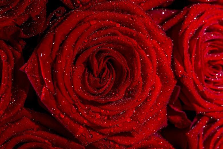 <strong>Bukiet kwiatów</strong><br /> To obowiązek każdego mężczyzny, by szczególnie tego dnia podarować Swojej Ukochanej kwiaty. Nieważne, czy to będzie prezent główny, czy tylko uzupełnienie. Pamiętajcie, intensywnie czerwone róże to symbol miłości!<br />