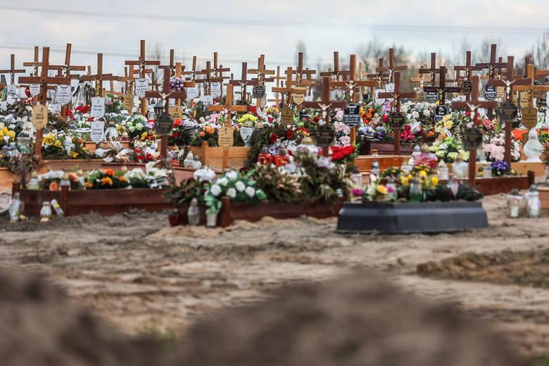 W Gdańsku, w I kwartale tego roku umarło o połowę więcej ludzi niż w analogicznych okresach w latach ubiegłych. Niecałe 22 proc. z tej liczby to zgony