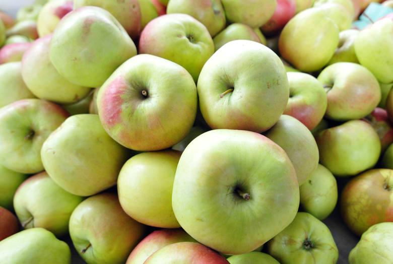 Jabłka – od  0,30 do 0,60 zł/lg