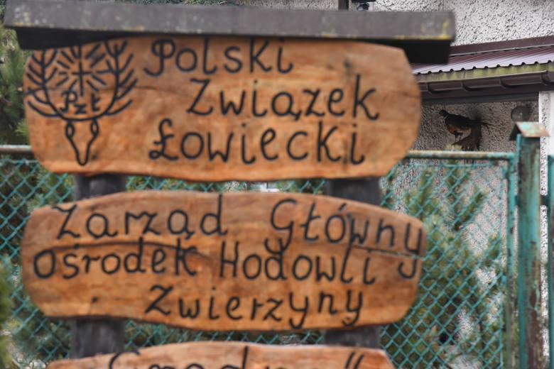 To w tym ośrodku w Grodnie k. Mirakowa miało miejsce polowanie na bażanty.