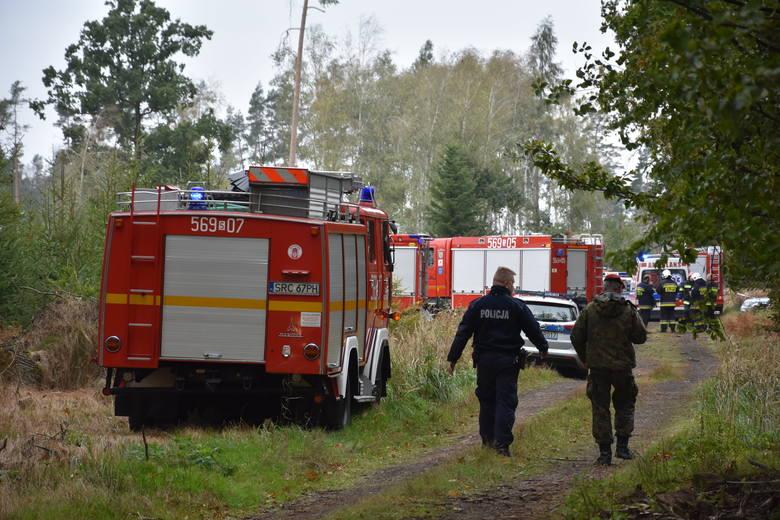 Wybuch pocisków w Kuźni Raciborskiej. Nie żyje dwóch saperów. Zginęli podczas służby w lesie