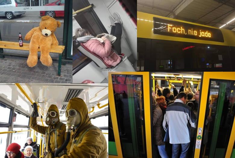 Przedziwne sytuacje w MPK. ZDJĘCIA z autobusów i tramwajów