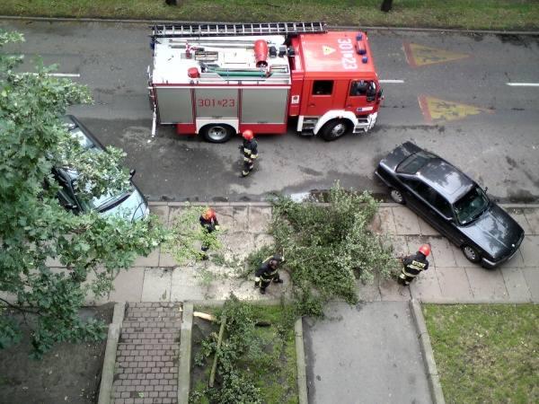 Strażacy na bieżąco usuwają skutki wichury.