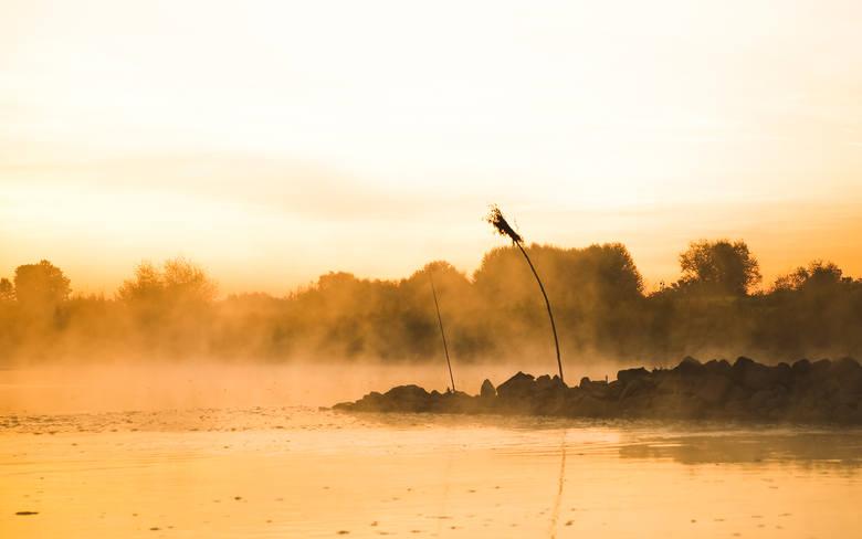 Wisła wciąż jest dziką rzeką z niewykorzystanym potencjałem. Jest jeden problem: śmieci