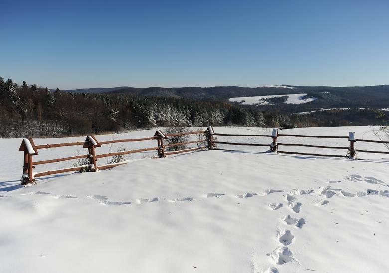 Na Pogórzu Przemyskim zalega sporo śniegu. Zobaczcie zdjęcia z Cisowej, oddalonej kilkanaście kilometrów od miasta.