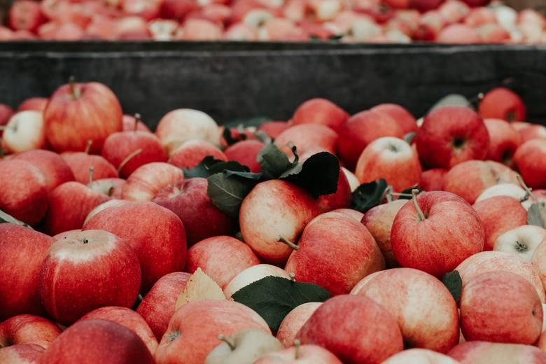 Jeśli chodzi o Unię Europejską, Polska jest niekwestionowanym liderem w produkcji jabłek i wiśni. Zgodnie z szacunkami co trzecie jabłko w Unii Europejskiej