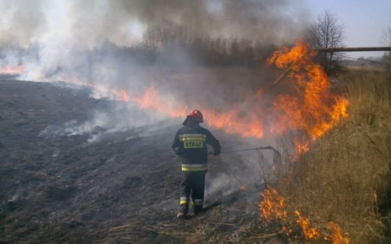 Strażacy jednej nocy gasili pięć pożarów