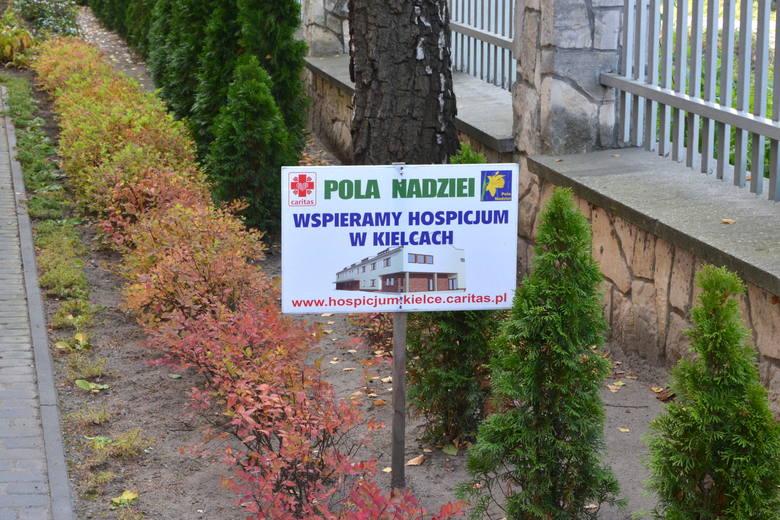 Msza święta w hospicjum w Kielcach rozpoczęła kampanię Pola Nadziei [ZDJĘCIA, WIDEO]