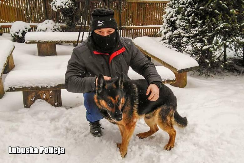 Policyjny pies Oskar odchodzi na emeryturę
