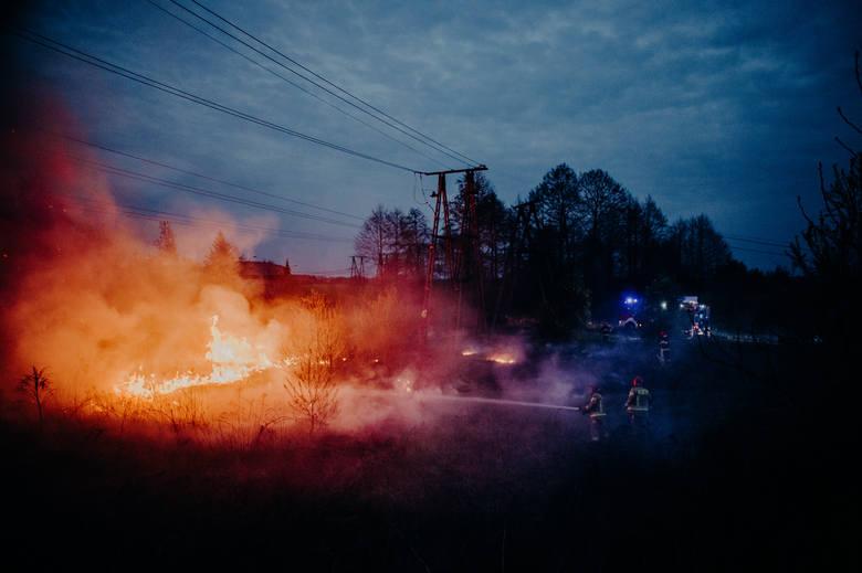 Pożar suchych traw przy ul. Droniowickiej w Lublińcu 23.04.2019.