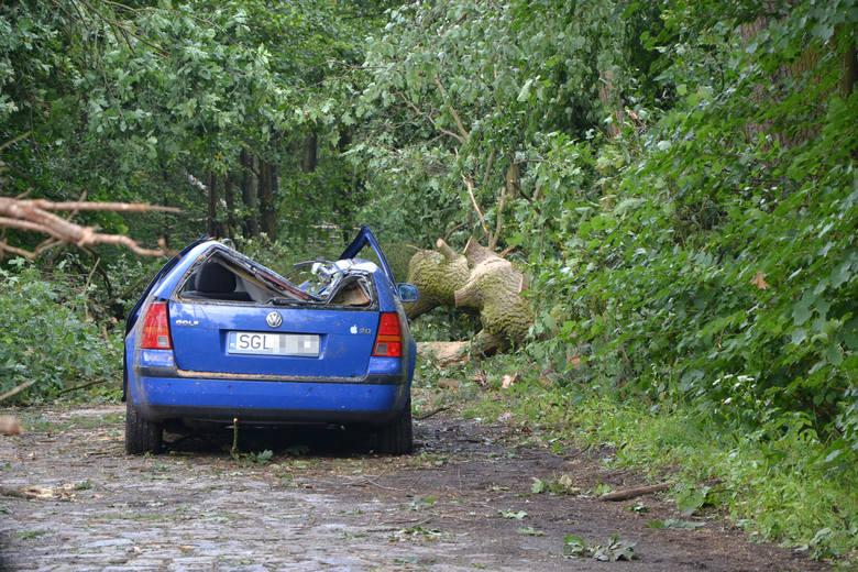 W Kuźni Raciborskiej obowiązuje całkowity zakaz wstępu do lasu, ze względu na niebezpieczeństwo związane z połamanymi konarami. Wielkie szkody lasom