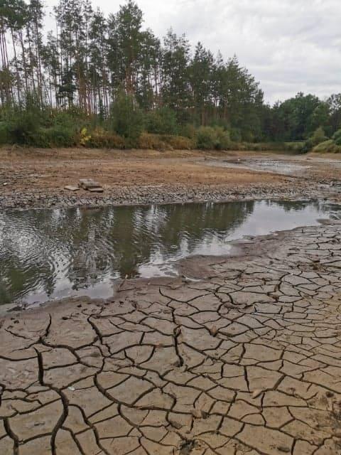 Wyschła rzeka. Znany przyrodnik zapowiada - to dopiero początek, czeka nas wielki kryzys [ZDJĘCIA]