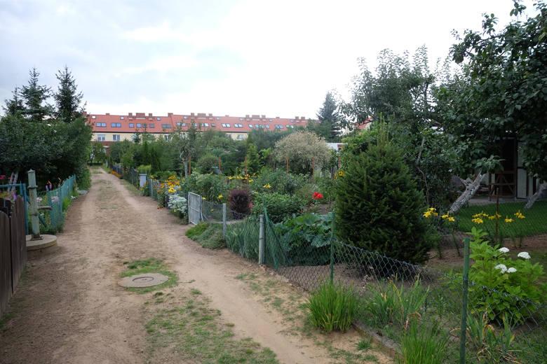 Na ogródki działkowe można jechać w ważnej sprawie i z zachowaniem wymaganych zasad bezpieczeństwa.