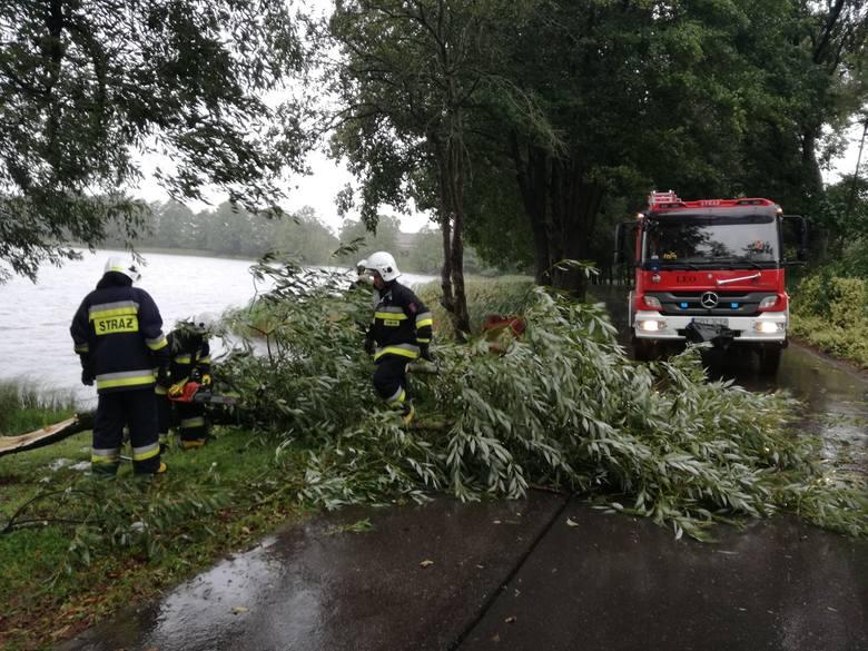 Dzisiaj (wtorek) w wyniku silnego wiatru na drogę w Piasznie (gm. Tuchomie) spadł konar, utrudniając przejazd. Na miejscu działali strażacy z OSP w Tuchomiu