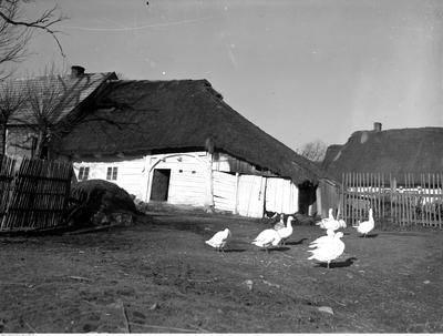 Zabieramy Was w podróż po świecie, którego już nie ma. Na zdjęciu - Bronowice koło Krakowa, listopad 1932 rokPonad 180 tysięcy fotografii z Narodowego