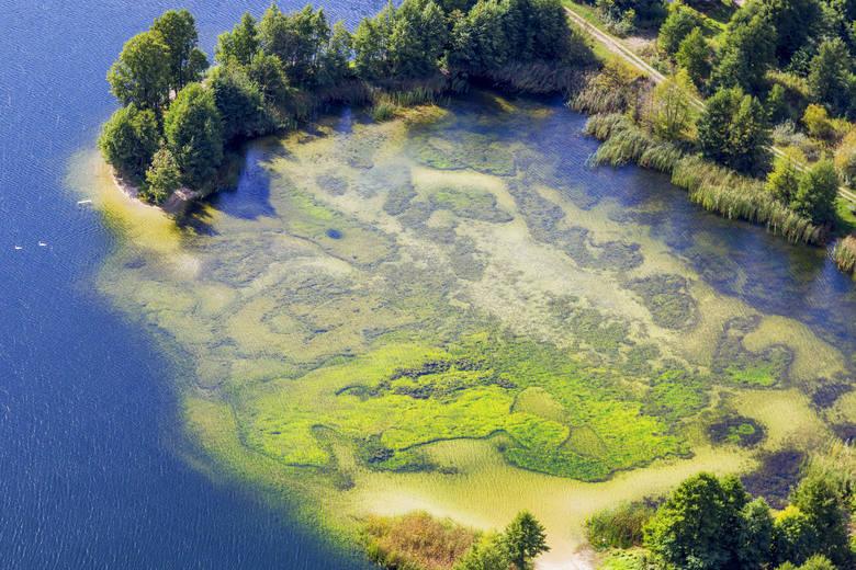 Półwysep Potrzymiech (fot. Daniel Pach)