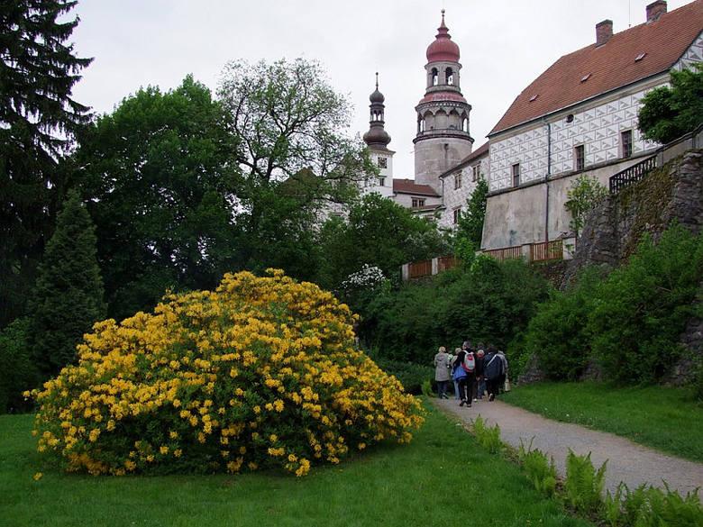 Pałac Nachod