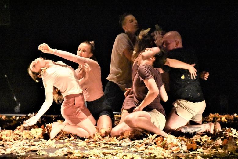 Dwie premiery pokazała na deskach Lubuskiego Teatru w 2019 r. Pracownia Teatru Tańca, działająca przy Młodzieżowym Centrum Kultury i Edukacji Dom Ha