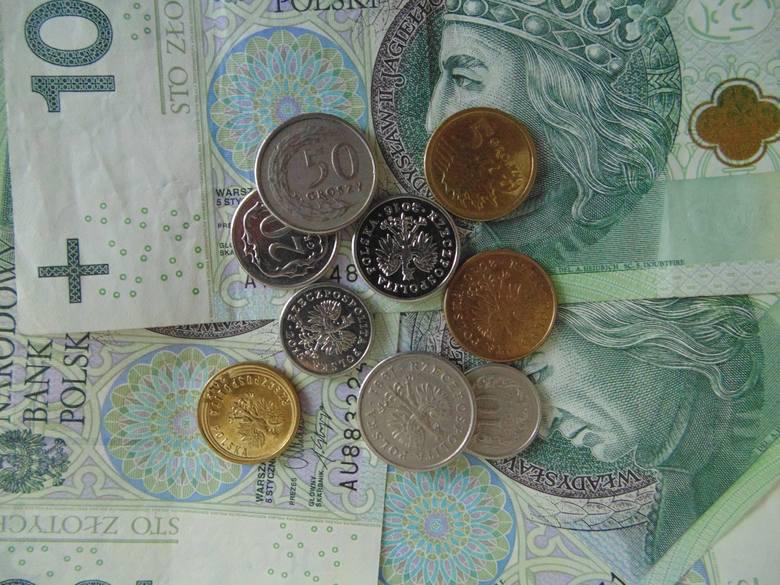 Ile zarabia senior? Porównaj zarobki na najpopularniejszych stanowiskach