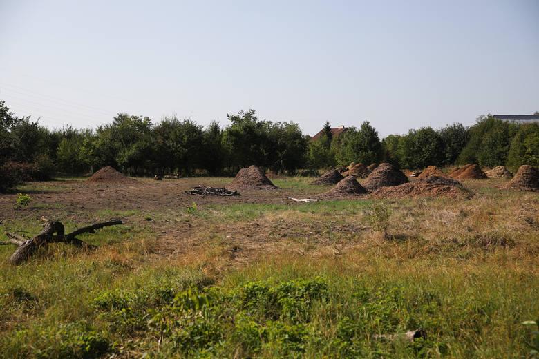 Plany wielkiego osiedla w rejonie Golikówki. Są kontrowersje. Prezes Instalu: nie rozumiem tego szumu