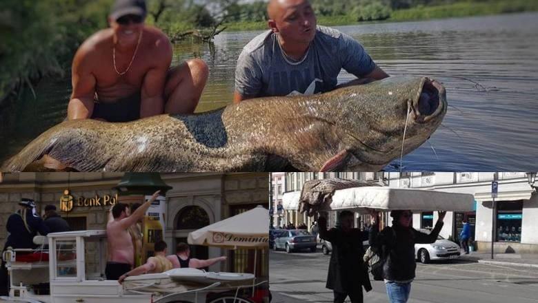 Takie rzeczy tylko w Krakowie. TOP 10 najbardziej niewiarygodnych sytuacji w mieście
