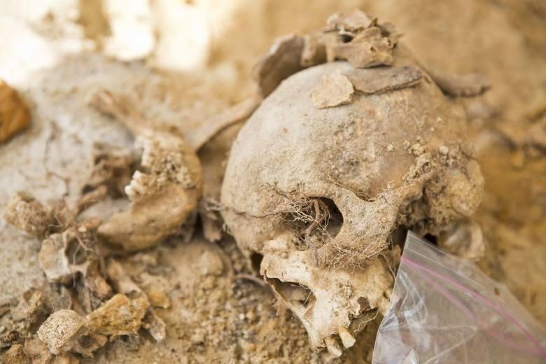 Areszt Śledczy. Odkopano szkielety kobiet oraz dzieci (zdjęcia, wideo)