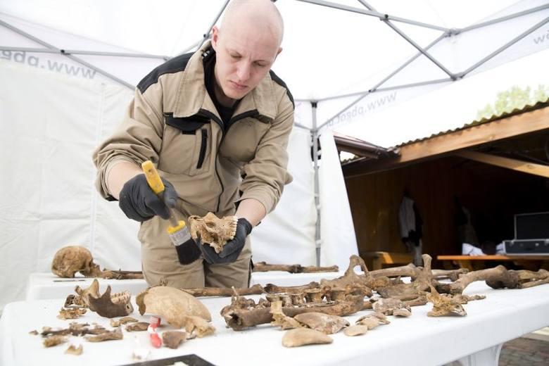 - Rozebraliśmy betonowe silosy wzdłuż ogrodzenia i dokonaliśmy wstrząsającego odkrycia -  mówi Adam Falis, biegły archeolog, nadzorujący badania.