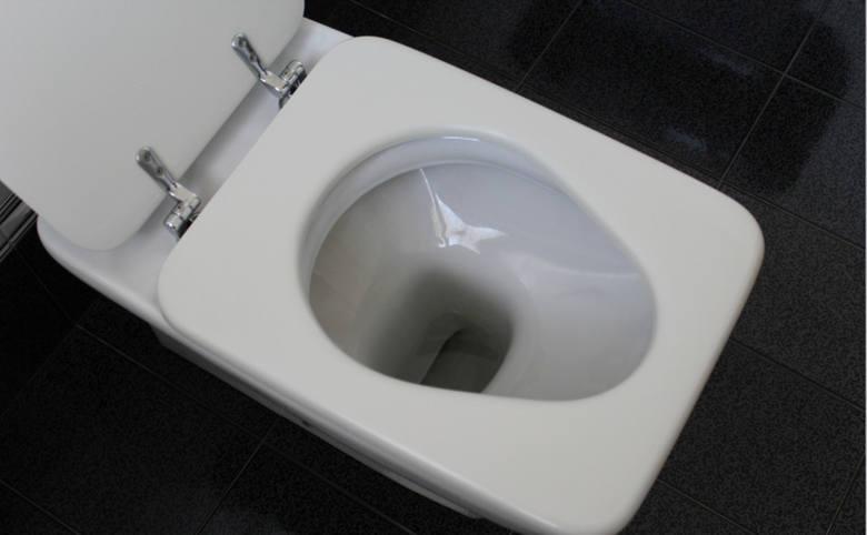 Prawidłowa eksploatacja toalety oraz bieżące utrzymywanie jej w nienagannym stanie higienicznym ogranicza ryzyko powstawania zatorów.
