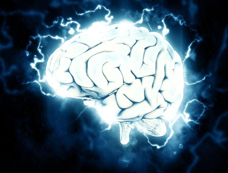 Okazuje się, że ćwiczyć można nie tylko swoje ciało, ale też mózg. Jeśli chcesz być bardziej efektywny w pracy, sprawniej się uczyć, łatwiej poznawać