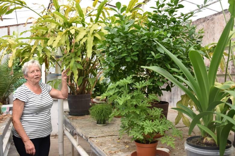 Do roślin - podobnie jak do ludzi - trzeba mieć podejście
