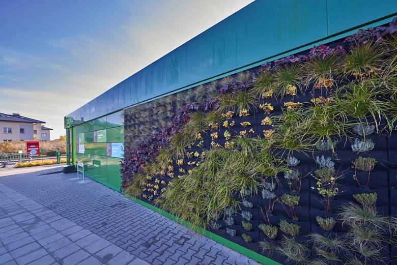 Fotowoltaika, odnawialne źródła energii, recykling. Żabka stawia na zielone rozwiązania