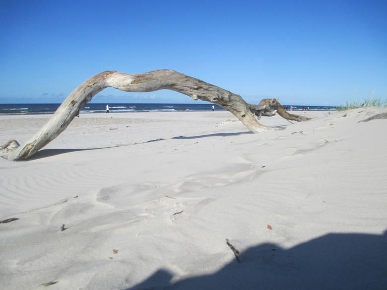 Łeba stolicą negliżu? 3 czerwca otwarcie plaży nudystów