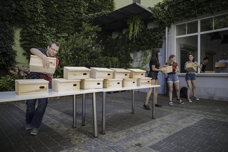 Latem Vikingowie rozdawali mieszkańcom Wrocławia budki dla jerzyków, które stanowią nieocenioną pomoc w walce z komarami.