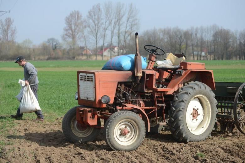 Traktor, czyli ciągnik rolniczy nazywany był nawet... czołgiem. Dziś bez tego urządzenia nikt nie wyobraża sobie prawdziwego gospodarstwa rolniczego