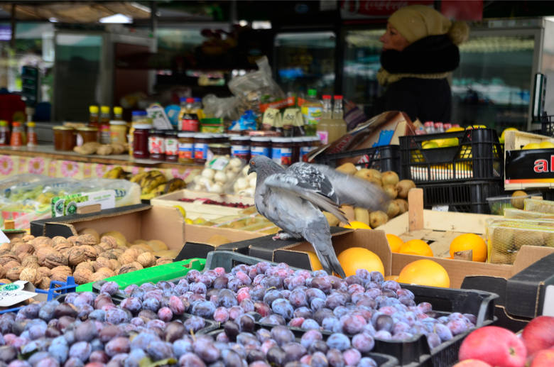 Producenci żywności ekologicznej od dziewięciu lat próbowali ożywić targ przy placu Bernardyńskim. W każdą sobotę przed ich straganami pojawiały się tłumy poznaniaków, którzy szukają ekologicznej tradycyjnej i regionalnej żywności.