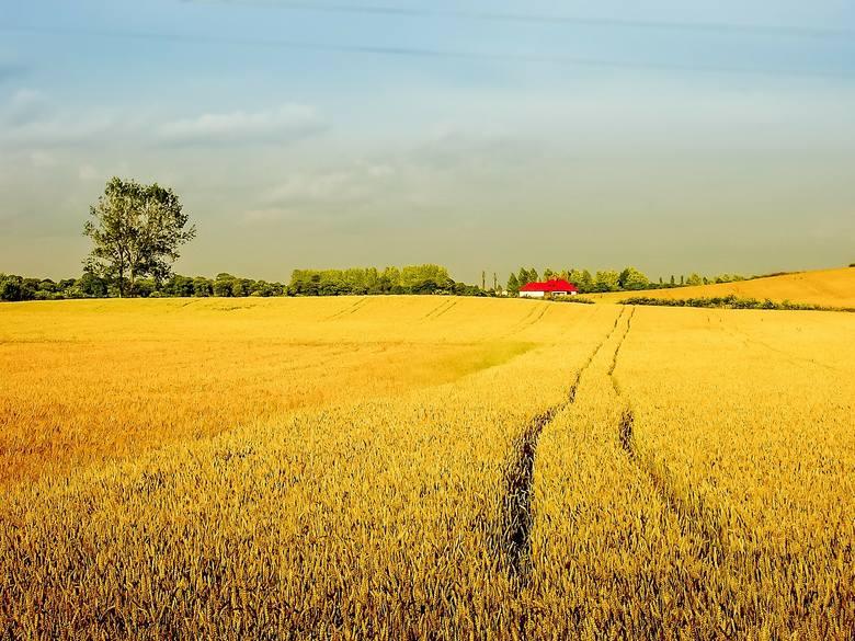 Na następnych planszach - 15 najbogatszych gmin wiejskich w województwie śląskim.