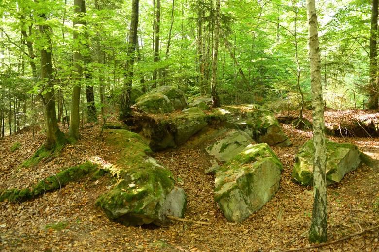 Pomnik przyrody Góra Kamień
