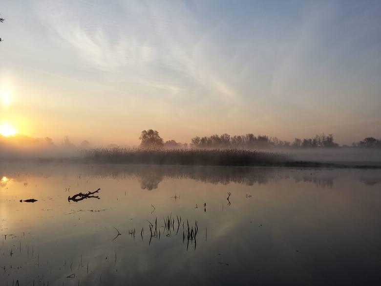 Wschód słońca nad Odrą