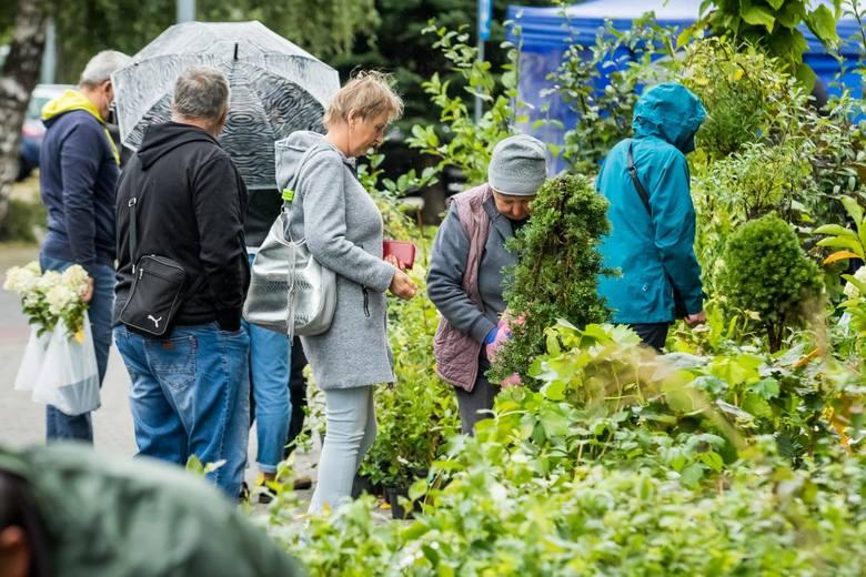 Każdy, kto chce upiększyć swój ogród, działkę czy balkon w ten weekend (26 i 27.09.) powinien się wybrać na Jesienny Kiermasz Ogrodniczy. To już 35.