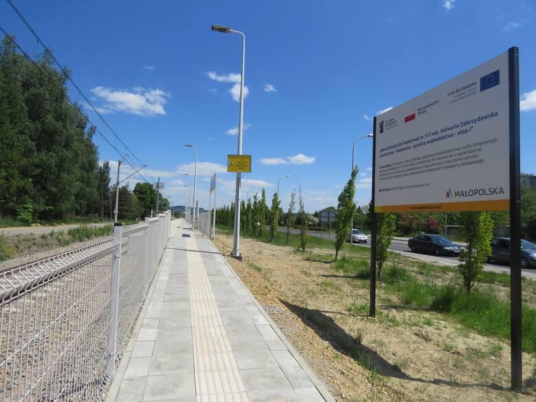 Zające w okolicach przystanku kolejowego i torowiska w Wadowicach