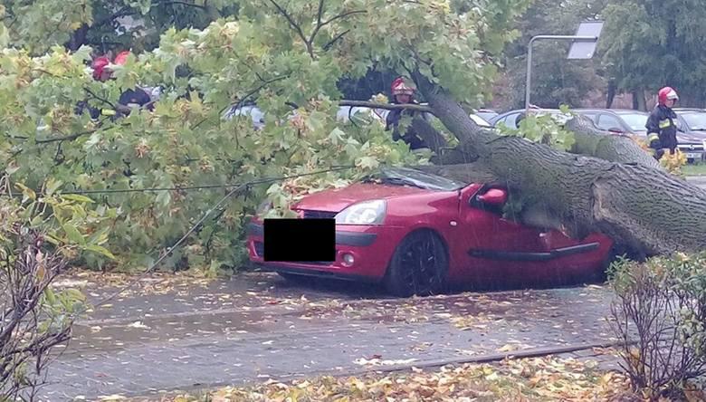 Drzewo spadło na samochód  na ul. Muzealnej w Nowej Soli