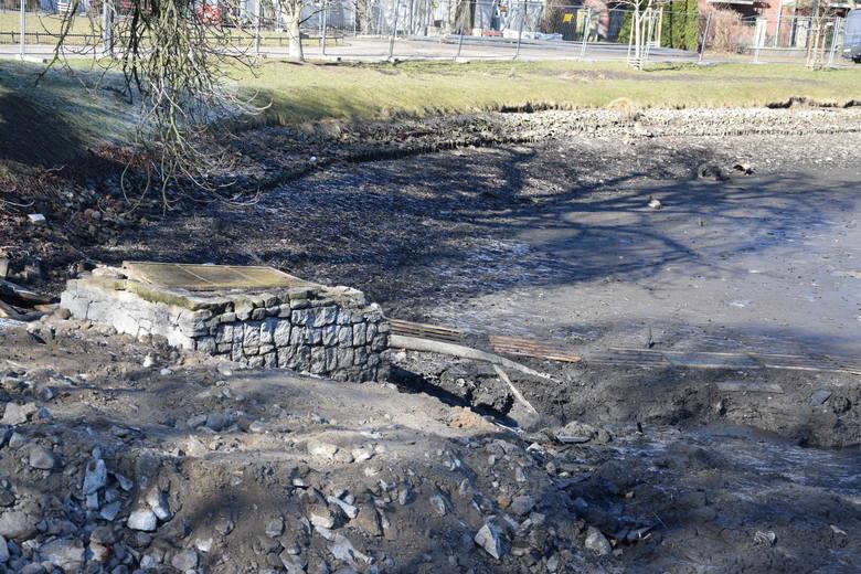 Oczyszczenie stawu w Parku Róż jest jednym z punktów rewitalizacji.