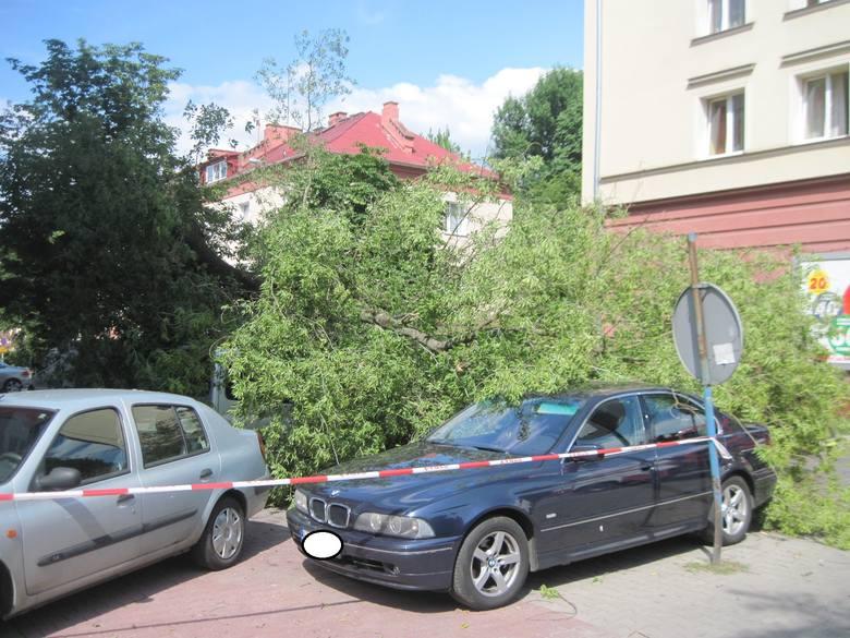Na ul. Puławskiej połamane drzewo uszkodziło cztery samochody (ZDJĘCIA)
