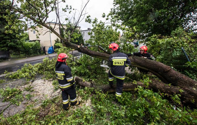 Po godzinie 21 strażacy wyjeżdżali m.in. do Szklarskiej Poręby, gdzie na Zakręcie Śmierci złamane przez wiatr drzewo zablokowało jezdnię. Zdjęcie il