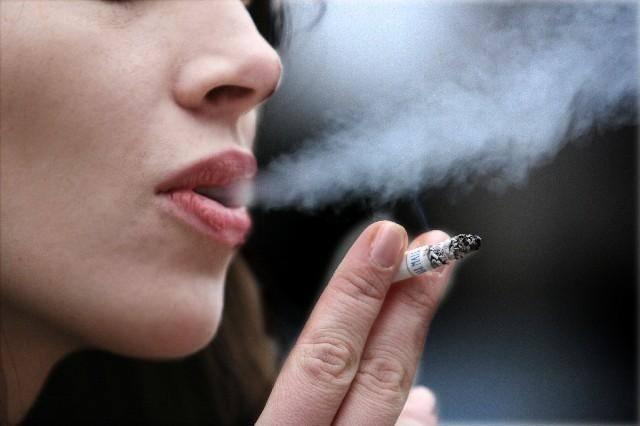 Program kontroli papierosówRozważane jest też znaczne obniżenie poziomu nikotyny wwyrobach tytoniowych, zakaz stosowania filtrów, ustalenie minimalnej