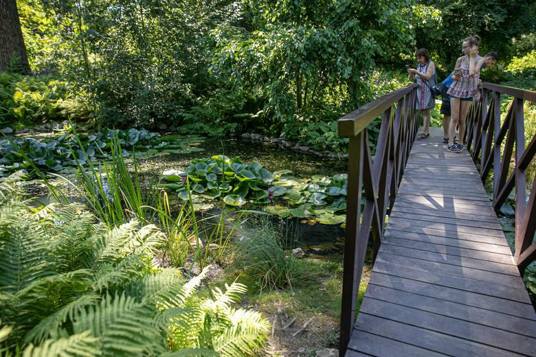 Kraków. Ogród Botaniczny UJ wzbogaci się o odtworzoną okazałą oranżerię. Powstanie jego nowa wizytówka [WIZUALIZACJE, ZDJĘCIA]