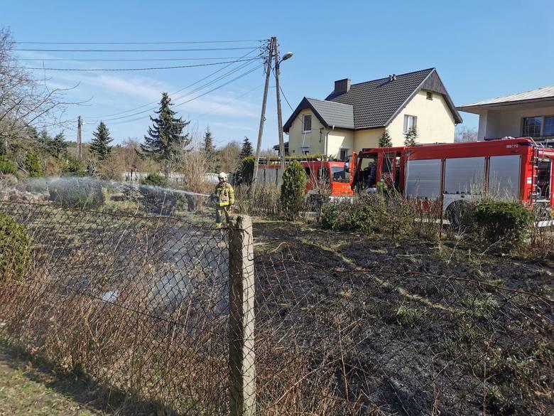 Spalanie śmieci podczas sprzątania przydomowego ogródka było przyczyną, iż ogień rozniósł się w mgnieniu oka na połać 2 arów! I to w samo południe. I