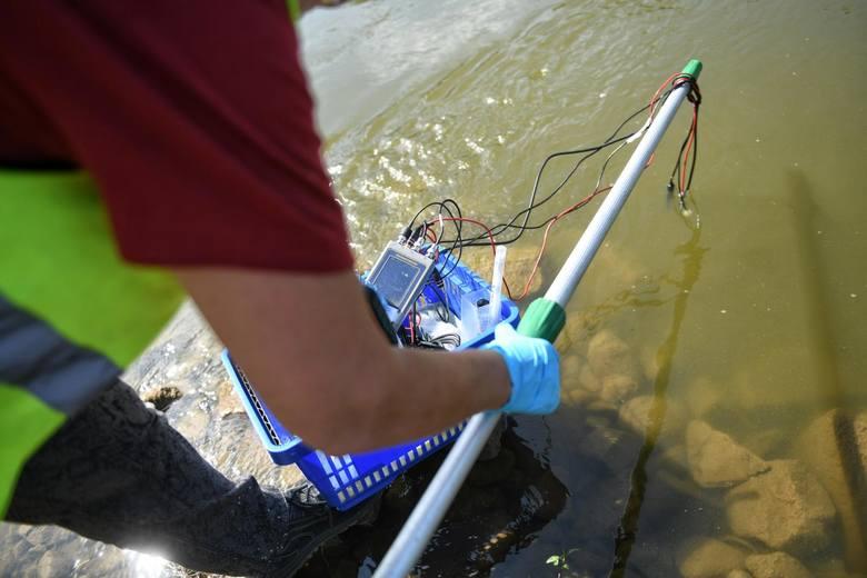 Do zatrucia Warty doszło w październiku 2015 roku. Z rzeki wyłowiono około 3 ton śniętych ryb, ale zginęło ich znacznie więcej. Biegli uznali, że wylanie